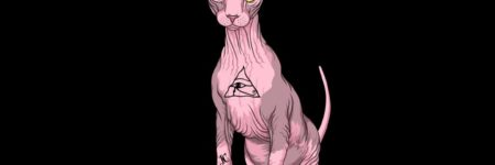 Sphynx o el gato esfinge
